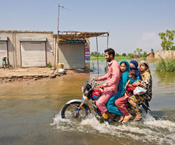 james longley, pakistan, flood, water, disaster, news, reportage