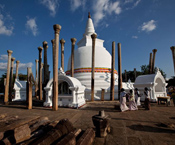 matthew niederhauser, sri lanka, tourist, festival, buddhist temple, sri lanka, buddhism